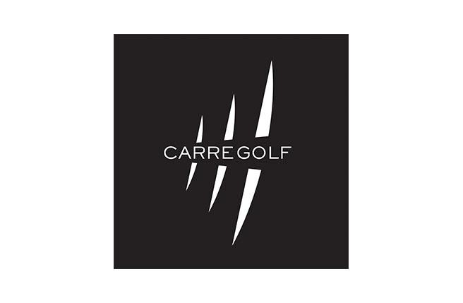 logo carre golf - pour medecins de l'imaginaire